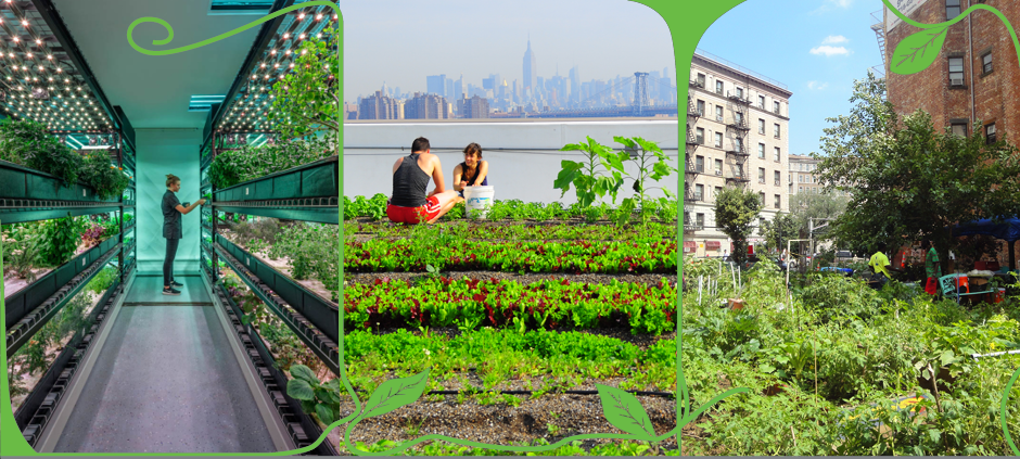 Urban Agriculture: Room to Grow