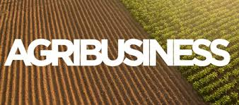Why the World Needs Agribusiness Professionals